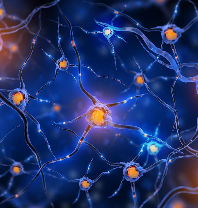 脑海绵状血管瘤国际前沿治疗技术