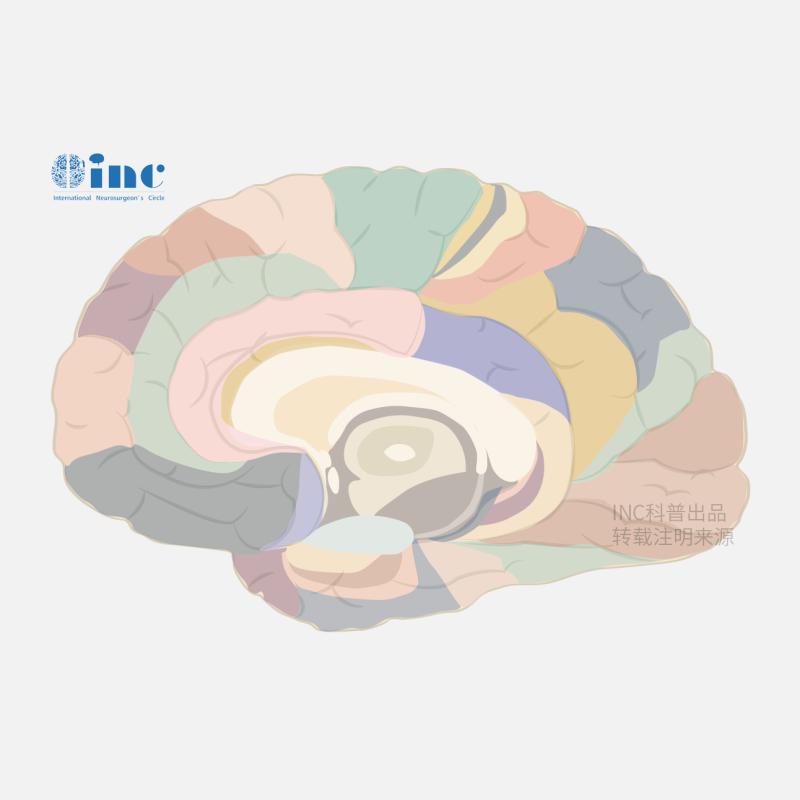 脊索瘤复发的预测因子有哪些?