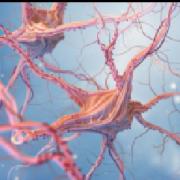 血液检测与AI程序人工智能程序相结合可以加速脑肿瘤的诊断