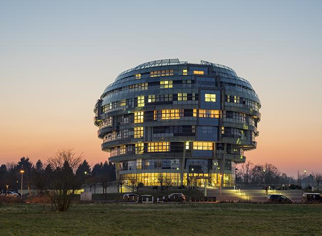 中国国际神经科学研究所(CHINA-INI)
