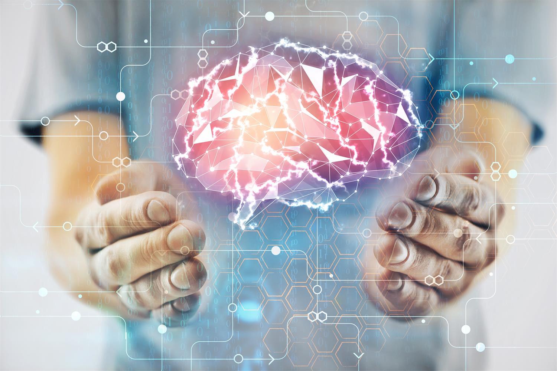 到底什么是脑科学呢?