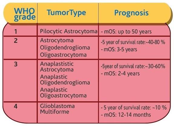胶质瘤生存期