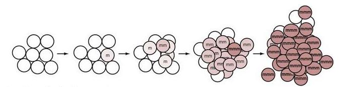 胶质母细胞瘤