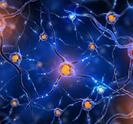 癫痫遗传吗?癫痫遗传学论述